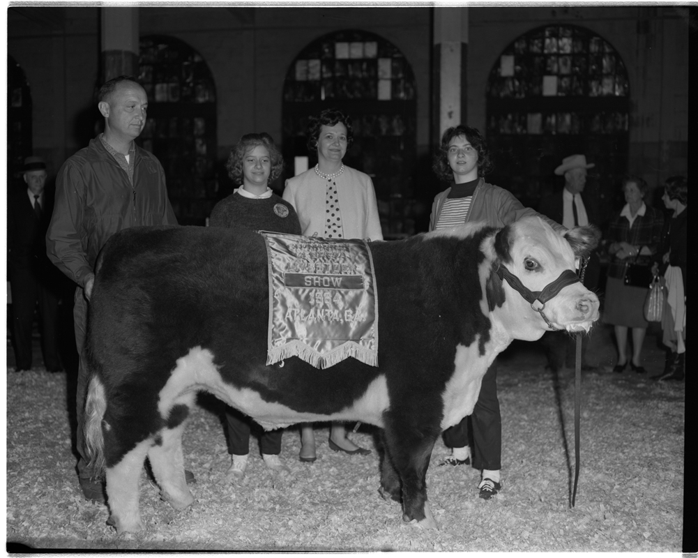 Georgia Fat Cattle.